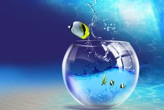 Yellow Fish - Obrázkek zdarma pro Sony Xperia Z1
