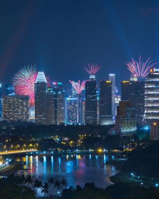 Singapore Fireworks - Obrázkek zdarma pro 240x400