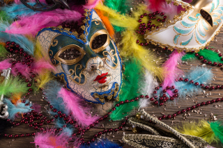 Free Carnevale di Venezia Picture for Android, iPhone and iPad