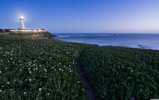 Free Pigeon Point Lighthouse Picture for Android, iPhone and iPad