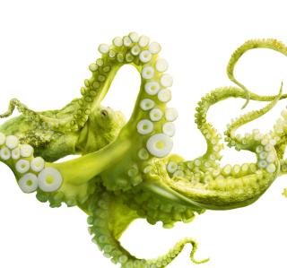 Green Octopus - Obrázkek zdarma pro iPad 2
