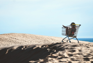 Girl In Shopping Cart Picture for Android, iPhone and iPad