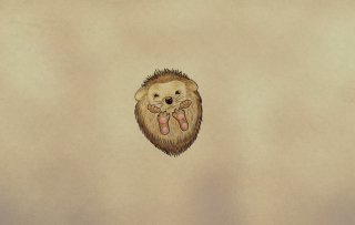 Cute Hedgehog Picture for Android, iPhone and iPad