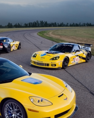 Chevrolet Corvette C6R GT2 - Obrázkek zdarma pro Nokia C-5 5MP