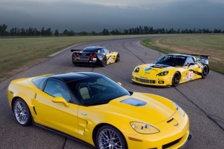 Free Chevrolet Corvette C6R GT2 Picture for Android, iPhone and iPad