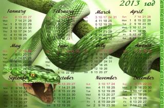 Snake Year - Obrázkek zdarma pro 480x400