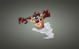 Looney Tunes Tasmanian Devil - Obrázkek zdarma pro 960x854