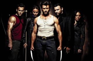 Wolverine - Obrázkek zdarma pro Motorola DROID 3