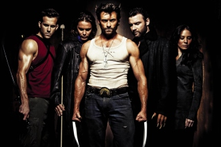 Wolverine - Obrázkek zdarma pro 320x240