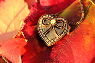 Free Autumn Heart Decor Picture for Nokia Asha 200