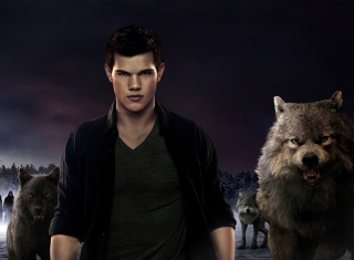 Twilight Saga - Obrázkek zdarma pro HTC Hero