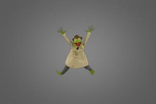 Muppet Show - Obrázkek zdarma pro Samsung Google Nexus S 4G