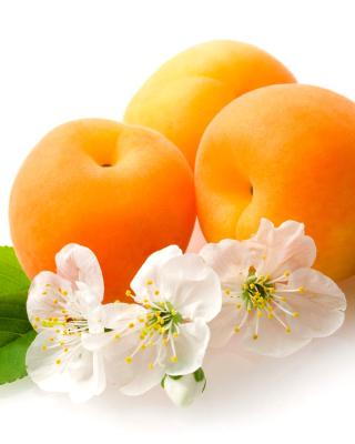 Apricot Fruit - Obrázkek zdarma pro 480x854