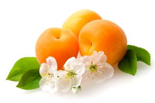 Apricot Fruit - Obrázkek zdarma pro Nokia XL