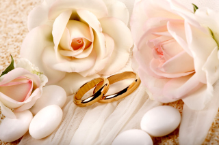 Roses and Wedding Rings - Obrázkek zdarma pro Widescreen Desktop PC 1440x900