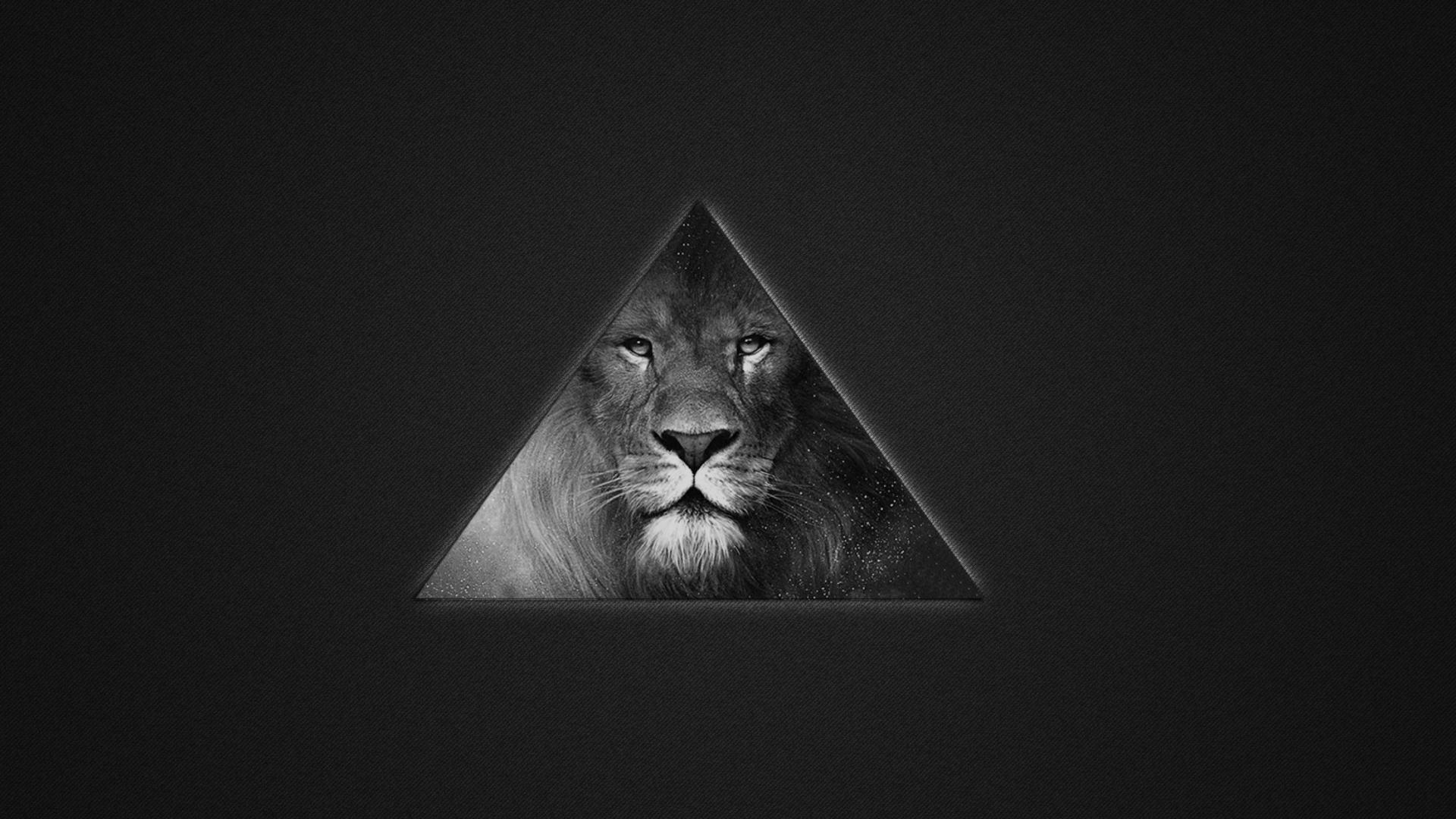 Kostenloses Lion's Black And White Triangle Wallpaper für Desktop ...