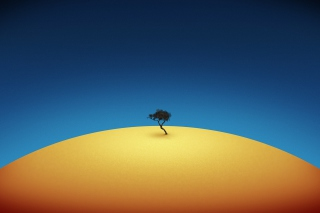 Lonely Tree Wallpaper for Android, iPhone and iPad