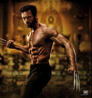 The Wolverine 2013 Movie - Obrázkek zdarma pro 208x208