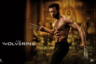 The Wolverine 2013 Movie - Obrázkek zdarma pro Widescreen Desktop PC 1680x1050
