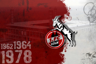 1.  FC Koln Wallpaper for Android, iPhone and iPad