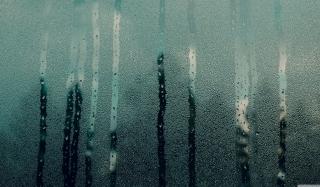 Steamy Window - Obrázkek zdarma pro 320x240