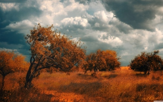 Armenia Byurakan Wallpaper for Android, iPhone and iPad