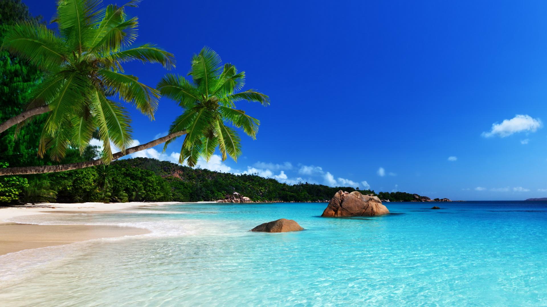 Turks and caicos islands coast sfondi gratuiti per desktop for Immagini per desktop mare