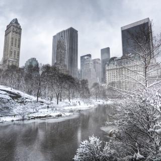 Central park - Manhattan - Obrázkek zdarma pro 1024x1024