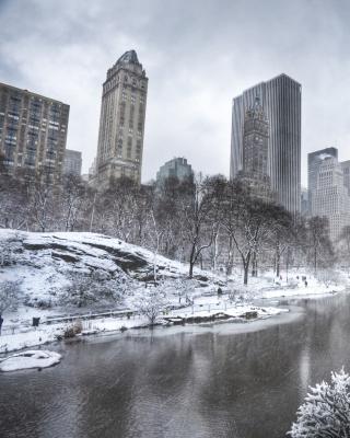 Central park - Manhattan - Obrázkek zdarma pro iPhone 5