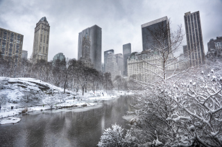 Central park - Manhattan - Obrázkek zdarma pro HTC Desire HD