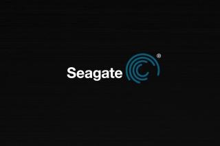 Seagate Logo - Obrázkek zdarma pro 1440x900