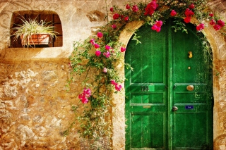 Picturesque Old House Door - Obrázkek zdarma pro Samsung I9080 Galaxy Grand