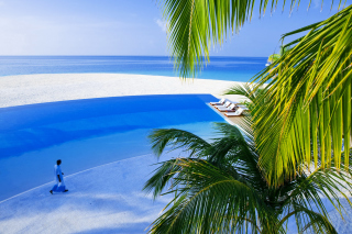 Free Maldives Meeru Island Picture for Android, iPhone and iPad