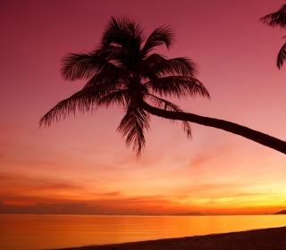 Crimson Sunset - Obrázkek zdarma pro 1024x1024