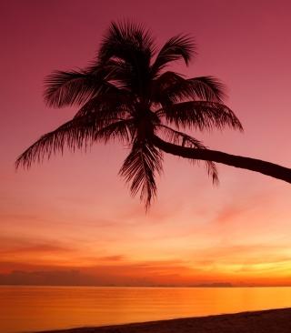 Crimson Sunset - Obrázkek zdarma pro iPhone 5C