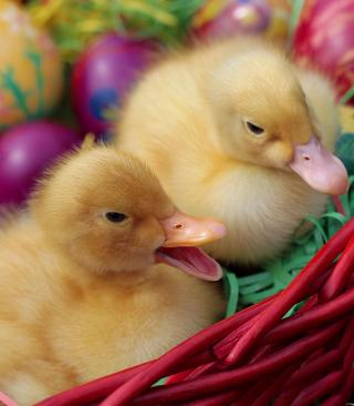 Yellow Duckling - Obrázkek zdarma pro 360x640