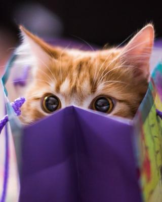 Ginger Cat Hiding In Gift Bag - Obrázkek zdarma pro Nokia Asha 502