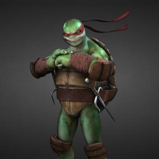 Tmnt, Teenage mutant ninja turtles - Obrázkek zdarma pro 320x320