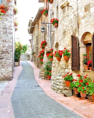 Italian Streets on Garda - Obrázkek zdarma pro Nokia Asha 310