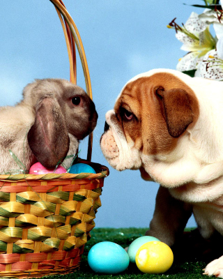 Easter Dog and Rabbit - Obrázkek zdarma pro Nokia Lumia 810