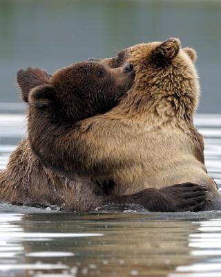 Brown Bear Hug - Obrázkek zdarma pro Nokia Lumia 505
