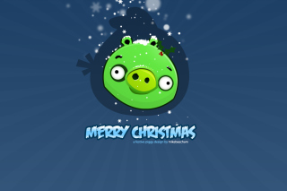 Green Piggi Merry Chirstmas Background for Android, iPhone and iPad