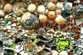 Shells and Pebbles Background for Android, iPhone and iPad