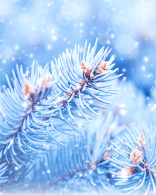 Snow on cones - Obrázkek zdarma pro Nokia Asha 300