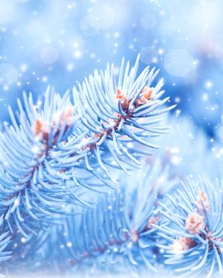 Snow on cones - Obrázkek zdarma pro Nokia 5800 XpressMusic