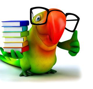 Funny Parrot - Obrázkek zdarma pro iPad 2