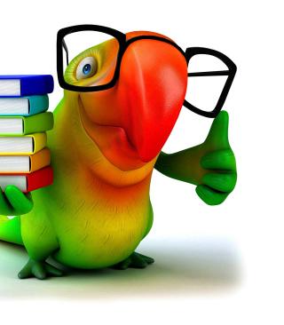 Funny Parrot - Obrázkek zdarma pro Nokia Asha 203