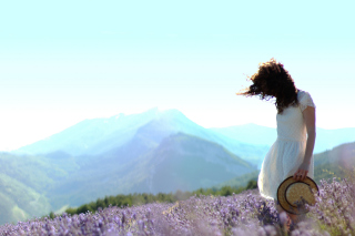 Girl In Lavender Field - Obrázkek zdarma