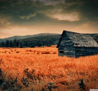 Lonely Countryside - Obrázkek zdarma pro iPad mini
