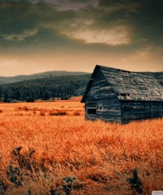 Lonely Countryside - Obrázkek zdarma pro 360x640